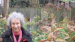 01. November garden