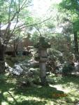 A moss garden, Kyoto
